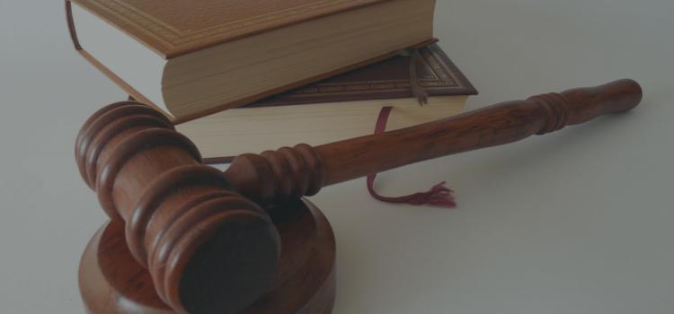 24 septembre 2019, première consultation juridique pour les auteurs
