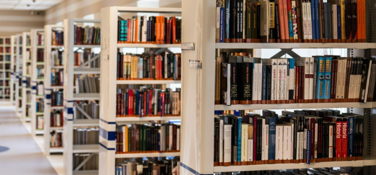 11 février 2021, webinaire d'échanges à destination des bibliothèques